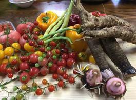 ひろしまで始まる新しい食と農業。~山の恵みでワールドカフェ&食の仕事・個別相談会~